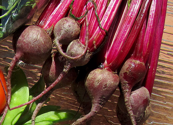 fresh beets or beetroot