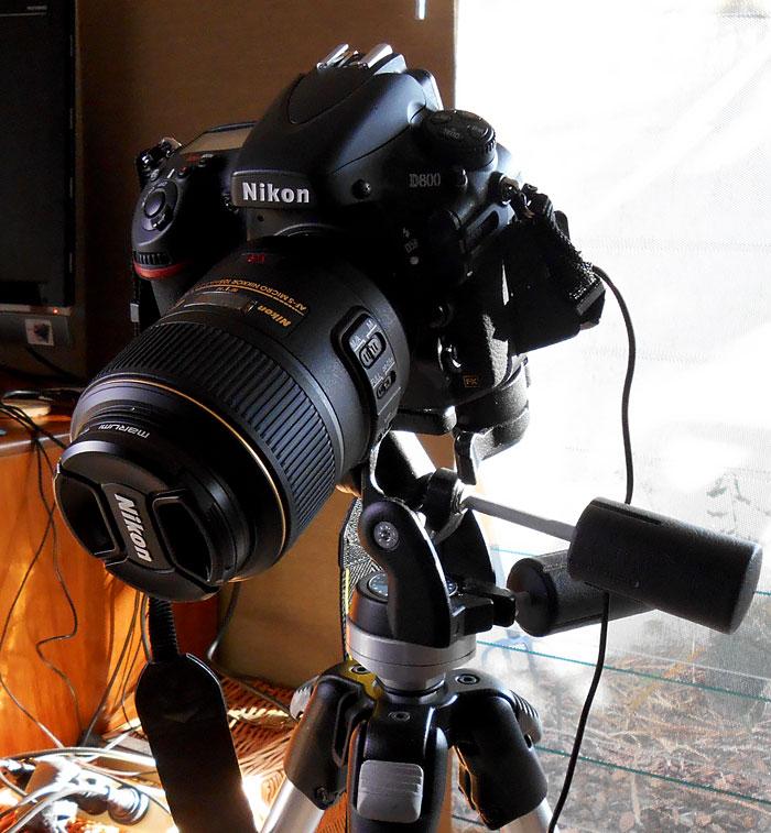 Nikon d800 camera