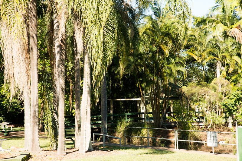 Park at Palmwoods