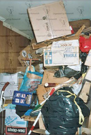 Example of hoarding before professional organizer