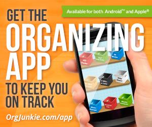 orgjunkie-app-300x250