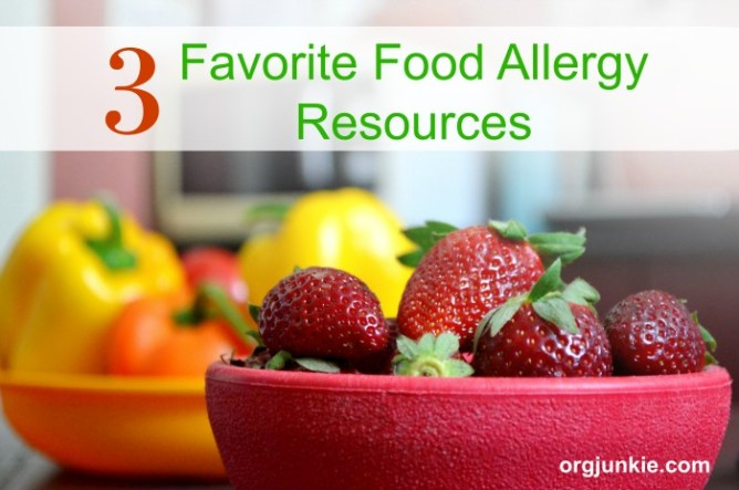 3 Favorite Food Allergy Resources at I'm an Organizing Junkie