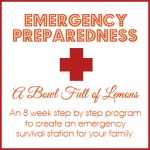 Emergency Preparedness Giveaway (closed)