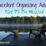 Excellent Organizing Advice from Challenge Participants