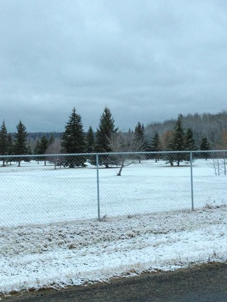first snowfall 2013