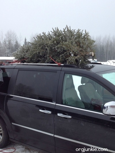 Christmas tree on van