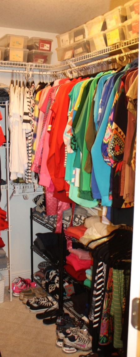 the gold project closet organization 6