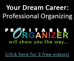 Profitable Organizer Feb 2015