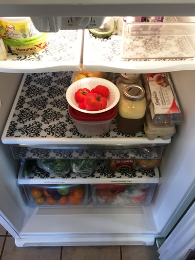 fancy fridge 1