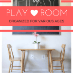 An Organized Playroom for Various Ages