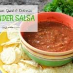 10 Minute Quick & Delicious Blender Salsa