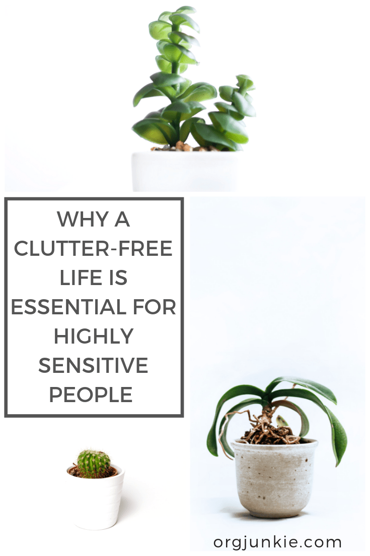 Why a Clutter-Free Life is Essential for Highly Sensitive People