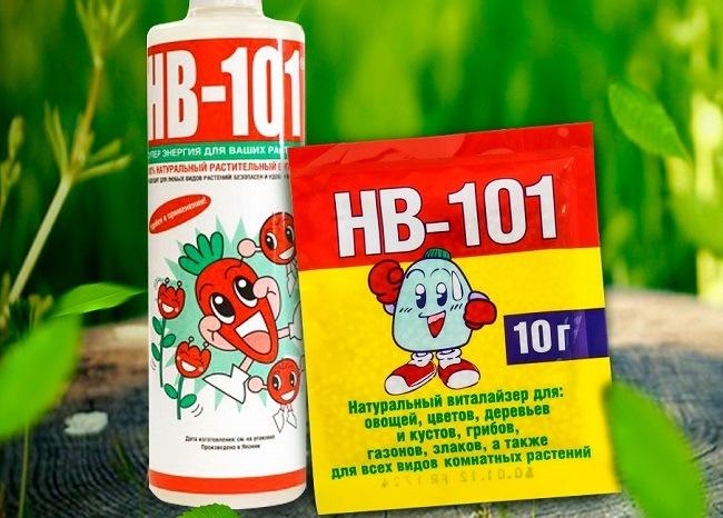 Дайындық HB-101