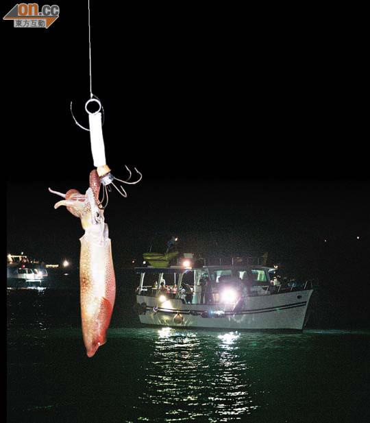 探射燈:墨魚船無牌海鮮餐 小心中毒 - 東方日報
