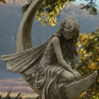"""Elfe Lunaria 1 - Elfe """"Lucky"""" auf Drache und Drachenbaby"""