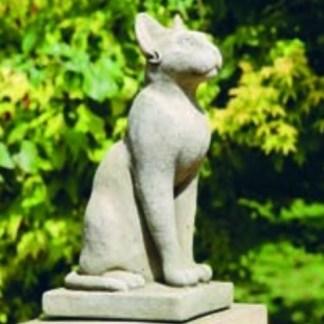 Katze Pharao
