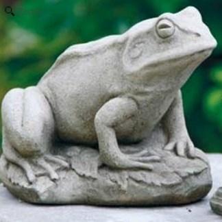 Frosch auf Stein sitzend - Frosch auf Stein sitzend