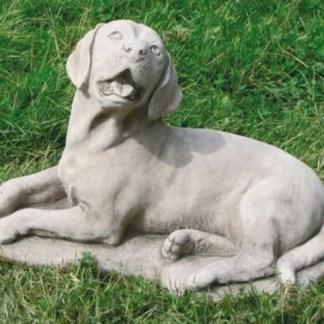 Hund Labrador gross - Hund Labrador gross