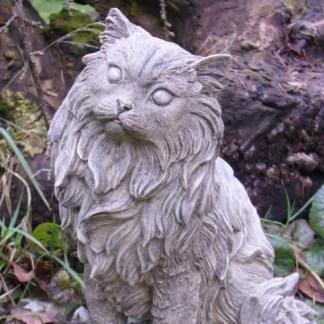 Katze Kathy