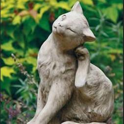 Katze kratzend auf Kissen - Katze kratzend auf Kissen