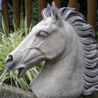 Pferdebüste Naduah