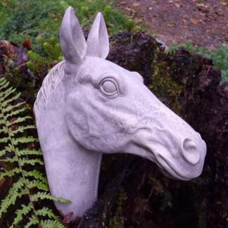 Pferdekopf Alcor