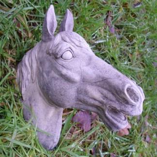 Pferdekopf Dakota - Pferdekopf Dakota, Wandpferdekopf