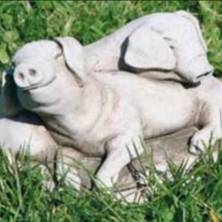 Schwein Ferkelchen