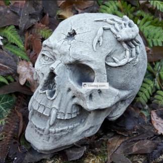 Totenkopf Skull mit Skorpion