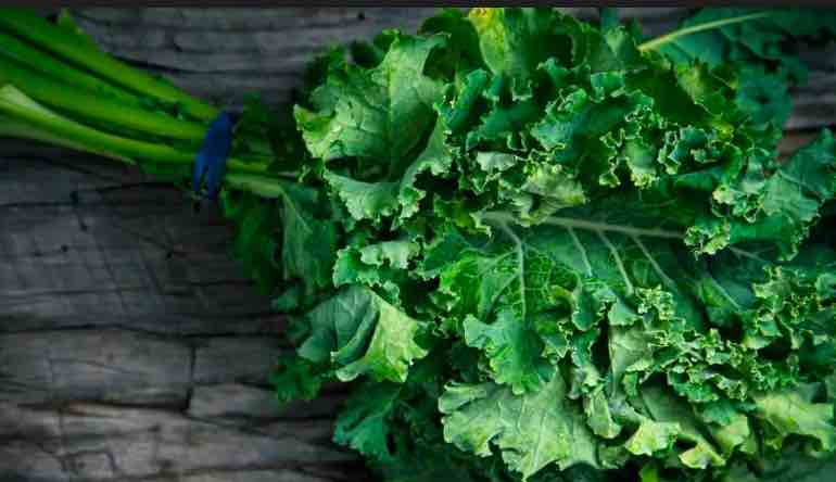 Is Kale Good For you - Kale leaves
