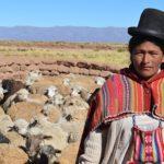 Stopa nepismenosti u Boliviji najniža u istoriji