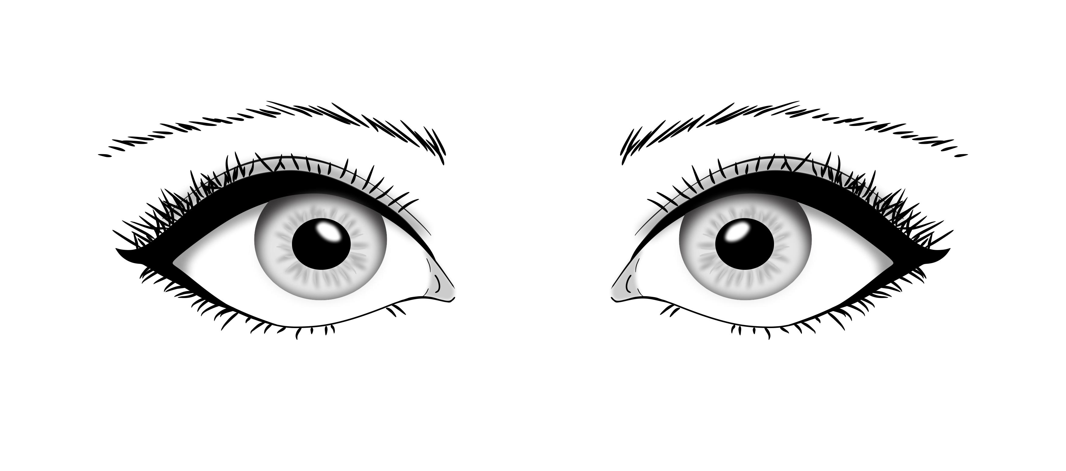 Eyes Vector By Saigolp On Deviantart