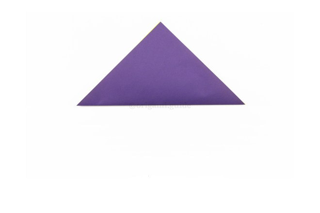 2. Take the bottom corner and fold it up to the top corner to create a central crease.