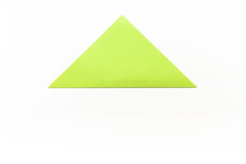 3. Fold the bottom corner up to the top corner.