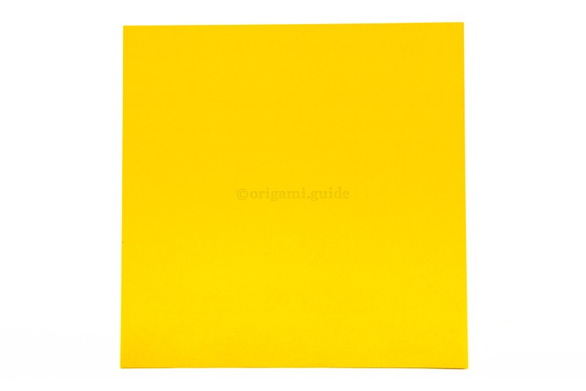 2. This is the front of the paper, our fish will end up being this colour.
