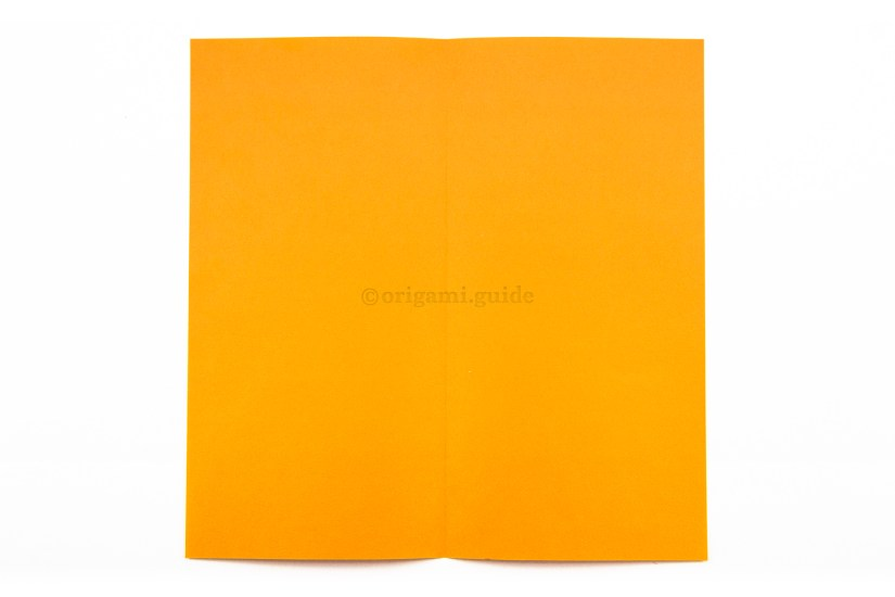 4. Unfold the paper.