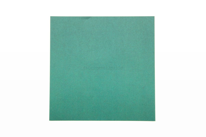 1. This is the back of the paper, usually white. This side will not be visible on the final box.