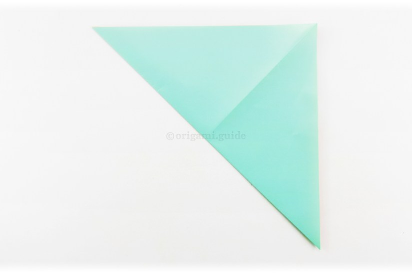 5. Fold the bottom left corner up to the top right corner.
