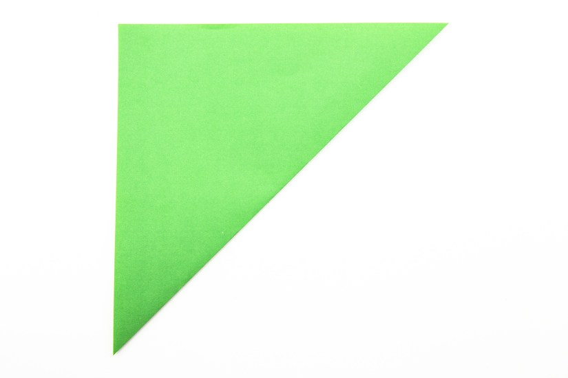 3. Fold the bottom right corner diagonally up to the top left corner.