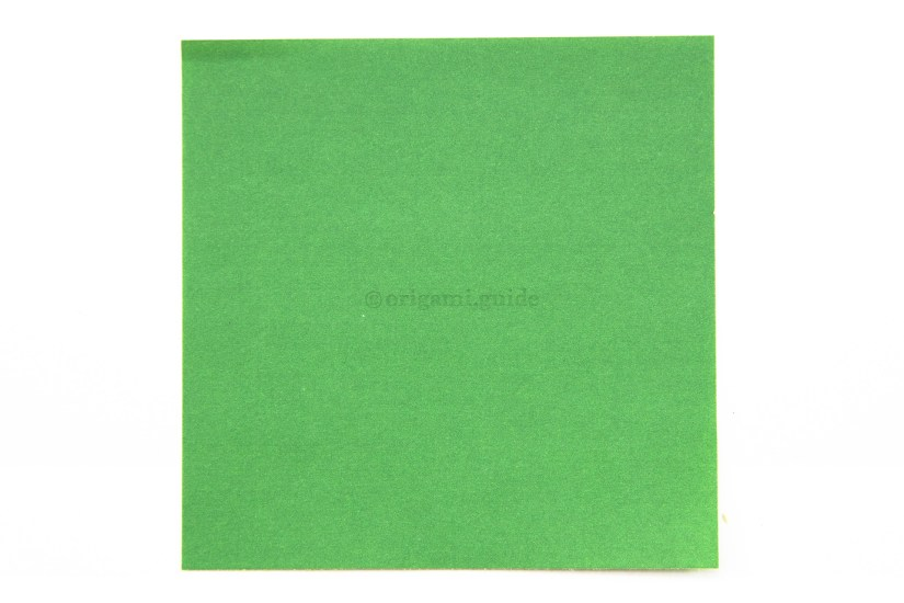 1. This is the back of the paper, usually white. You won't see this colour on the final model.