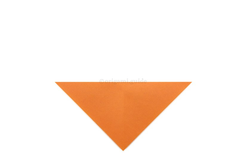 5. Fold the top point down to the bottom point.