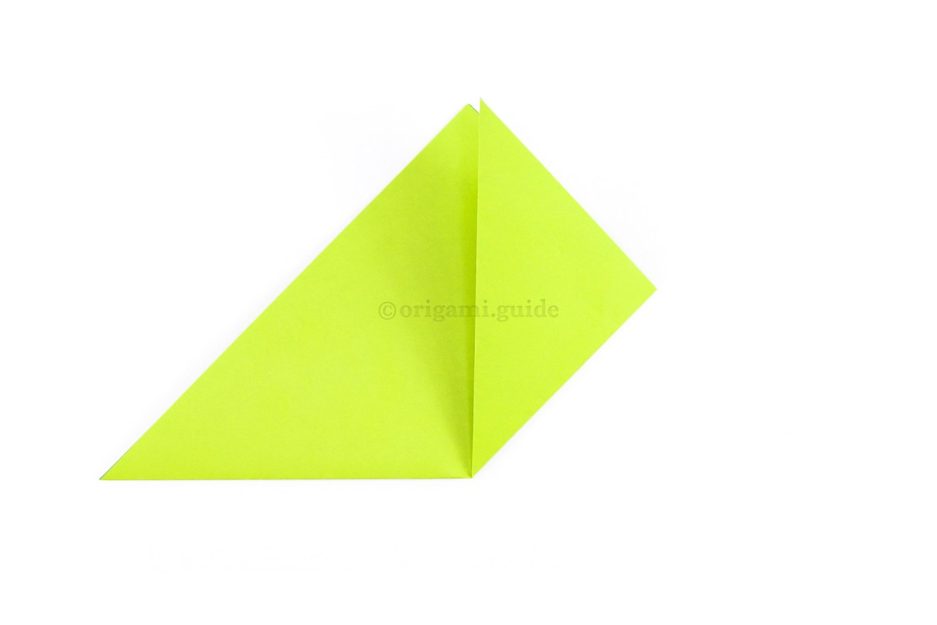 Fold the bottom right point up to the top point.
