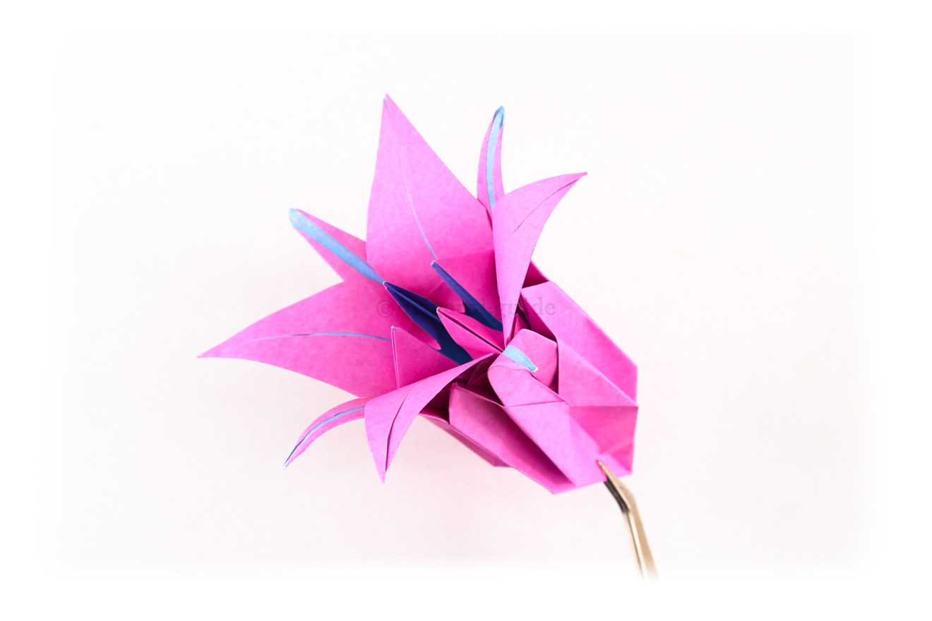You can also put your lily flower inside the lily bud, creating a much larger flower.