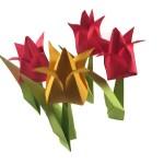 Traditional Origami Tulip Video