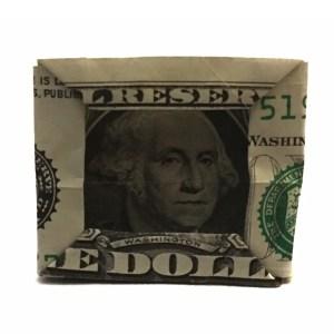 George Washington Framed, designed by Gay Merrill Gross