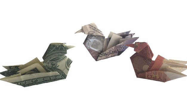 Money Origami Mandarin Duck