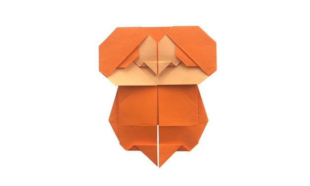 Big Eyed Baby Origami Bird!
