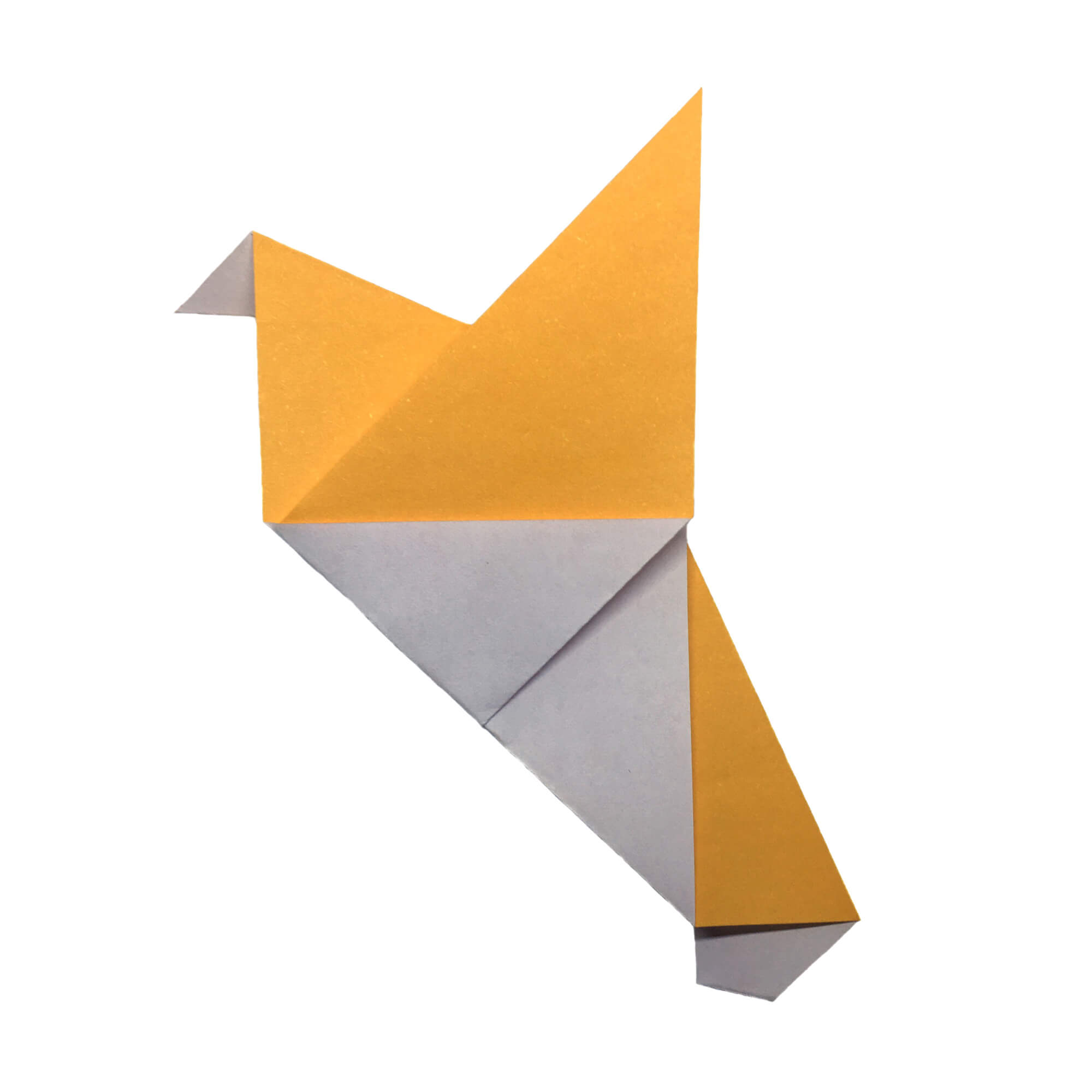 the origami pigeon experiment origami expressions