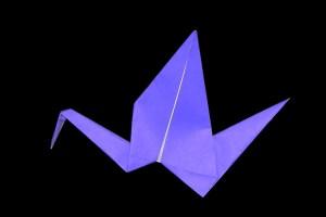 『動く鳥』の折り紙 折り方《鳥シリーズ》