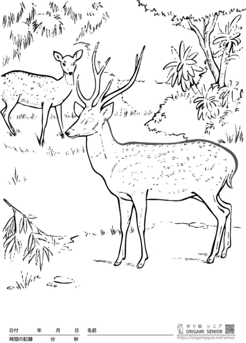 大人の塗り絵 鹿 無料プリント高齢者の脳トレレク